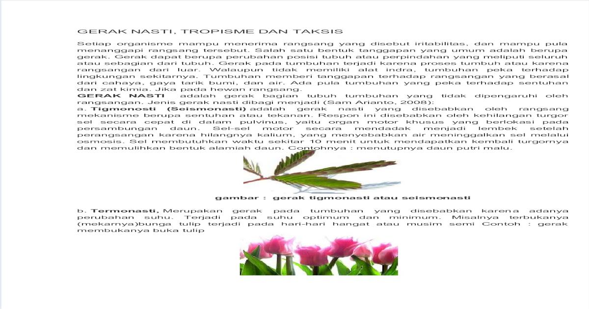 Gerak Nasti Docx Pdf Document